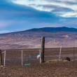 Stock Photo: Old broken down dilapidated fence in Iceland