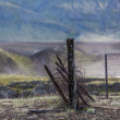 Old broken down dilapidated fence in Iceland — Stock Photo #39207019