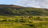 Rural wooden chalets in Iceland — Stock Photo