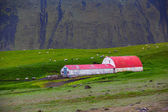 Rural farm in Iceland — Stock Photo