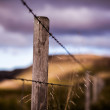 Old broken down dilapidated fence in Iceland — Stock Photo