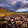 Stockfoto: Exposed ridge of igneous basalt rock in Iceland