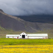 Stock Photo: Farmhouse in a lush green Icelandic landscape