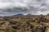 Old lava field in Iceland — Stock Photo