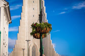 Flowers in front of Hallgrimskirkja in Reykjavich — Stock Photo