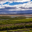Iceland landscape with meandering rivers — Stock Photo #40722891