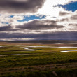 Iceland landscape with meandering rivers — Stock Photo #40723107