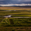 Iceland landscape with meandering rivers — Stock Photo #40723173