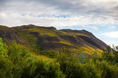 Lush green mountain landscape in Iceland — Stock Photo