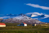 Remote farm in Iceland — Stock Photo