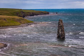 Coastal scene in Iceland with a rock stack — Stock Photo