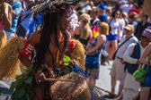 The Carnival of Cultures — Stockfoto
