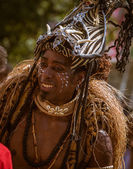 The Carnival of Cultures — Stock fotografie