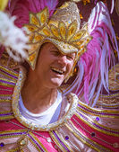 The Carnival of Cultures — Stock Photo