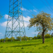 Electricity pylons crossing field — Stock Photo #48684669