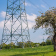 Electricity pylons crossing field — Stock Photo #48684703