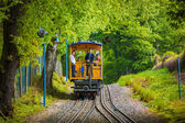 Tourists on a cog railway — Stock Photo