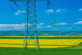 Electricity pylon in a canola field — Stock Photo