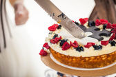 Cutting of the cake — Stock fotografie