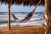 Hammock on Cape Verde — Stock Photo
