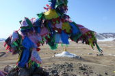 Buddhist prayer flags, Mongolia — Stock Photo