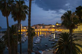 A View of the Old Town of Dubrovnik (Palms and Harbour in the Ni — Stock Photo