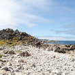 """China Rock"" am 17 MIle Drive — Stock Photo"