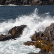 Breakwater at Dursey Sound — Stockfoto