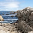 Stock Photo: View of 17 Mile Drive in California, USA