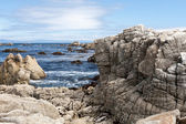 View of 17 Mile Drive in California, USA — Stock Photo
