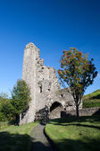 Mellifont Abbey located in County Louth, Ireland, Europe — Stock Photo