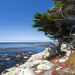 Sea View at 17 Mile Drive in Big Sur California — Stock Photo