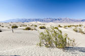 Sand dunes in Death Valley National Park near Stovepipe Wells — Stock Photo