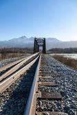 Railroad Switch and Bridge — Stock Photo