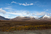 Tundra in autunno — Foto Stock