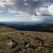 Stock Photo: High Alpine Tundra