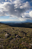 High Alpine Tundra — Stock Photo