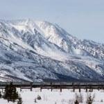 Oil Pipeline in Wilderness — Stock Photo #25263125