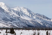 Oil Pipeline in Wilderness — Stockfoto