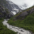 Glacial Stream — Stock Photo