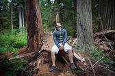 Hiker in Redwoods — Stock Photo