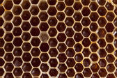 Bio-lebensmittel und alle dinge im zusammenhang — Stockfoto