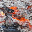 Ash and embers of bonfire after barbecue cooking — Stock Photo