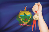 Medal in hand with flag on background - State of Vermont. Part of a series. — Foto de Stock