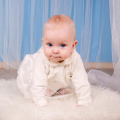 Baby 6 months on a blue background — Stock Photo