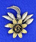Vintage pin — Stock Photo