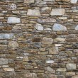 Stone wall — Stock Photo #22685311
