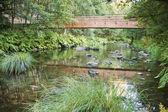 Drewniany mostek — Zdjęcie stockowe