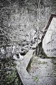 Water mill — Foto Stock