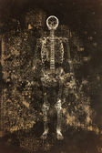 Skeleton with grungy background — 图库照片